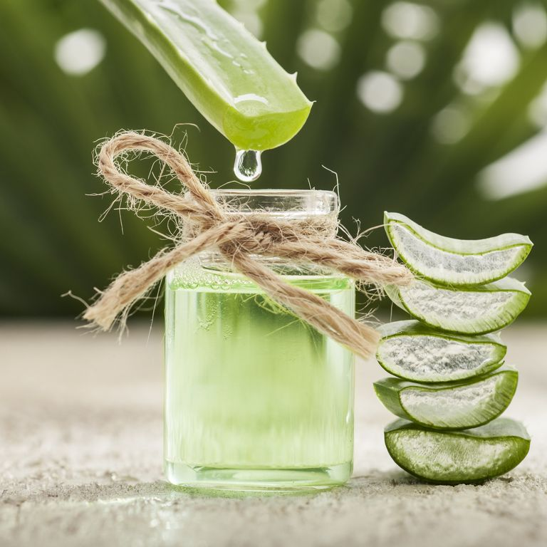 10 choses à faire avec l'Aloe Vera