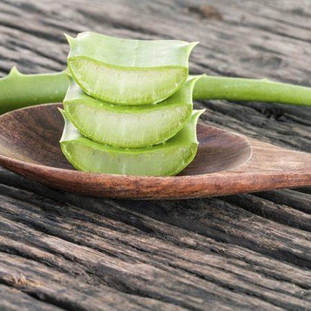 Utilisation de l'Aloe Vera sur les cicatrices